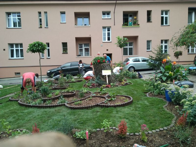 Jedna z inicjatyw lokalnych: rewitalizacja podwórka przy ul. Kościuszki/ Szeligiewicza/ Narcyzów/ Różana